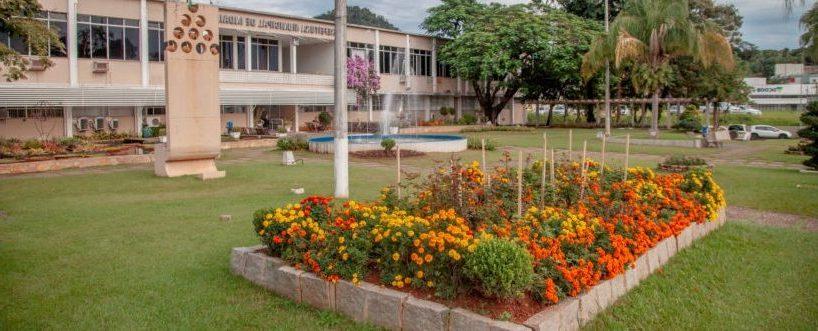 Gestão Pública de Sucesso: Prefeitura de Indaial promove agilidade e diminui tempo na resolução dos processos